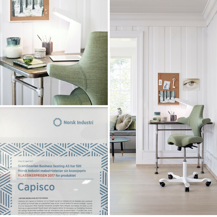 HÅG Capisco in green - perfect for home office and with award