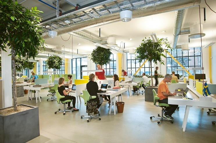 design perfect co-working environment.jpg